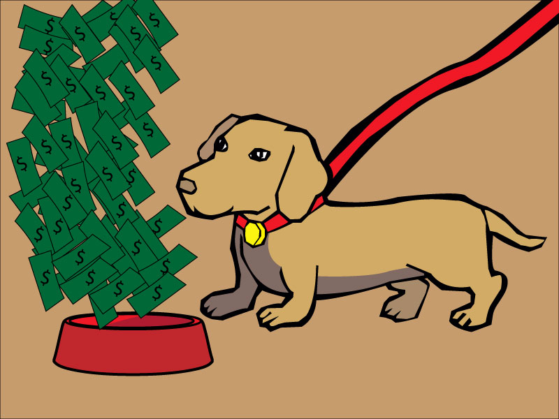 Pet owner's guide to saving money while keeping animals happy and healthy